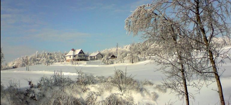 Zima 2021 w Oazie Zdrowia!