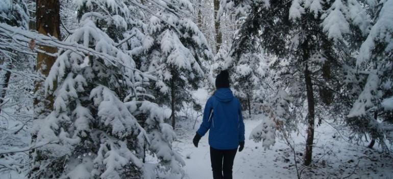 Zima 2017 w naszej Oazie – jak w Narnii…