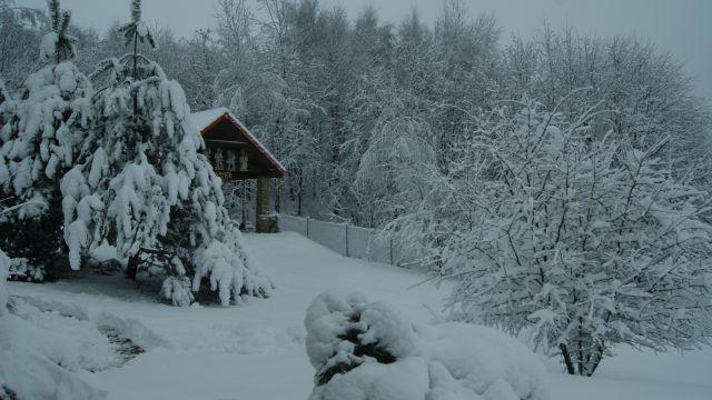 zima-2017