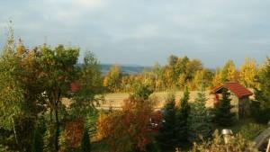 jesień z okna