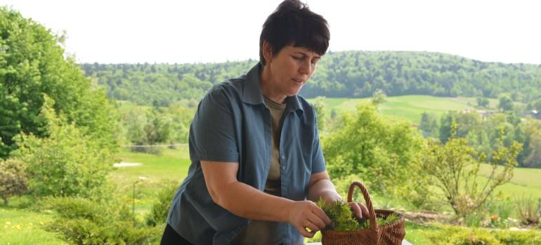 Krem choinkowy – majowa receptura św.Hildegardy